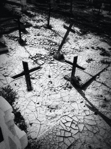Black and white photo of headstones in a graveyard.