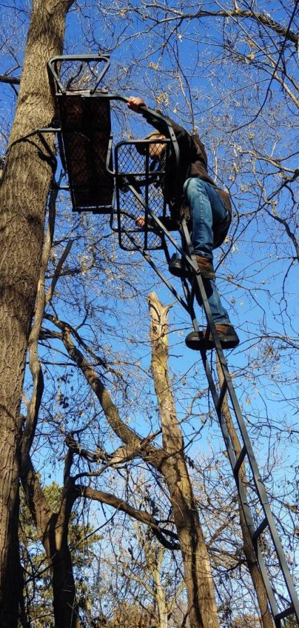 Hunter climbing into their tree stand on a nice day in the fall.